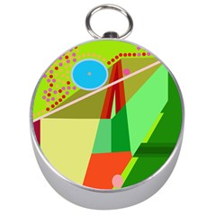 Colorful abstraction Silver Compasses