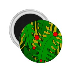 In the jungle 2.25  Magnets