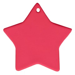 Wild Watermelon Colour Ornament (Star)