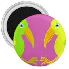 Parrots 3  Magnets