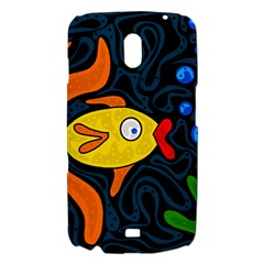Yellow fish Samsung Galaxy Nexus i9250 Hardshell Case