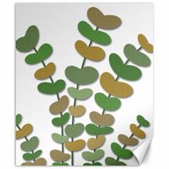 Green decorative plant Canvas 20  x 24