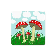 Mushrooms  Square Magnet