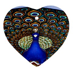The Peacock Pattern Ornament (Heart)