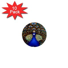 The Peacock Pattern 1  Mini Magnet (10 pack)