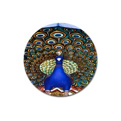 The Peacock Pattern Magnet 3  (Round)