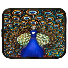 The Peacock Pattern Netbook Case (XXL)