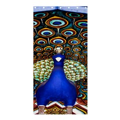 The Peacock Pattern Shower Curtain 36  x 72  (Stall)