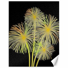 Dandelions Canvas 12  x 16