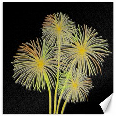 Dandelions Canvas 20  x 20