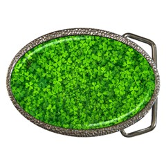 Shamrock Clovers Green Irish St  Patrick Ireland Good Luck Symbol 8000 Sv Belt Buckles