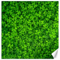 Shamrock Clovers Green Irish St  Patrick Ireland Good Luck Symbol 8000 Sv Canvas 12  X 12