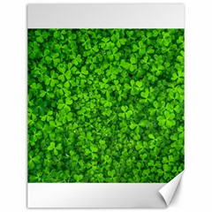 Shamrock Clovers Green Irish St  Patrick Ireland Good Luck Symbol 8000 Sv Canvas 12  X 16