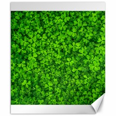 Shamrock Clovers Green Irish St  Patrick Ireland Good Luck Symbol 8000 Sv Canvas 20  X 24