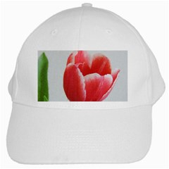 Red Tulip Watercolor Painting White Cap