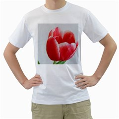 Red Tulip Watercolor Painting Men s T Shirt (white) (two Sided)