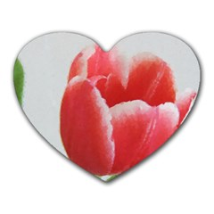 Red Tulip Watercolor Painting Heart Mousepads