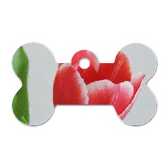 Red Tulip Watercolor Painting Dog Tag Bone (two Sides)