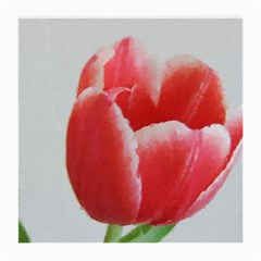Red Tulip Watercolor Painting Medium Glasses Cloth
