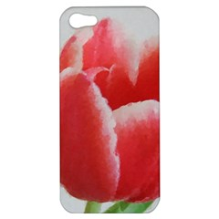 Red Tulip Watercolor Painting Apple iPhone 5 Hardshell Case
