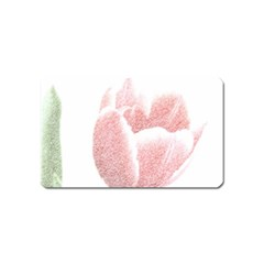 Red Tulip pencil drawing Magnet (Name Card)