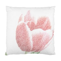 Red Tulip Pencil Drawing Standard Cushion Case (one Side)
