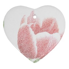 Red Tulip pencil drawing Ornament (Heart)