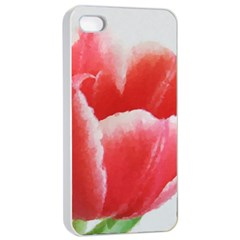 Tulip red watercolor painting Apple iPhone 4/4s Seamless Case (White)