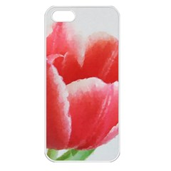 Tulip Red Watercolor Painting Apple Iphone 5 Seamless Case (white)