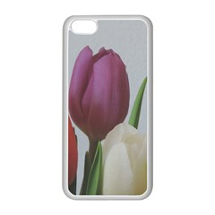 Tulips Apple iPhone 5C Seamless Case (White)
