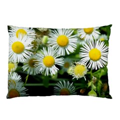 White Summer Flowers Oil Painting Art Pillow Case (two Sides)