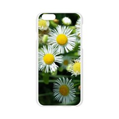 White summer flowers oil painting art Apple Seamless iPhone 6/6S Case (Transparent)