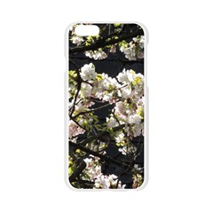 Japanese cherry blossom Apple Seamless iPhone 6/6S Case (Transparent)