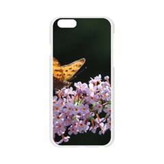 Butterfly sitting on flowers Apple Seamless iPhone 6/6S Case (Transparent)
