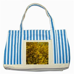 Nature, Yellow Orange Tree Photography Striped Blue Tote Bag