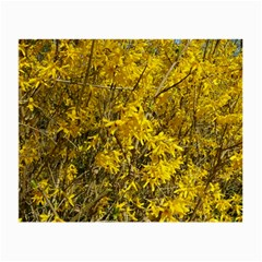 Nature, Yellow Orange Tree Photography Small Glasses Cloth (2-Side)