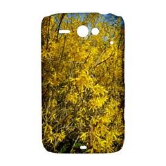 Nature, Yellow Orange Tree Photography HTC ChaCha / HTC Status Hardshell Case