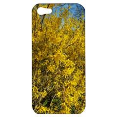 Nature, Yellow Orange Tree Photography Apple iPhone 5 Hardshell Case