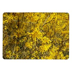 Nature, Yellow Orange Tree Photography Samsung Galaxy Tab 10.1  P7500 Flip Case