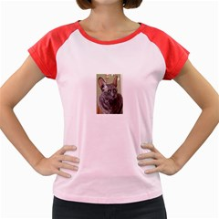 Cornish Rex, Blue Women s Cap Sleeve T-Shirt