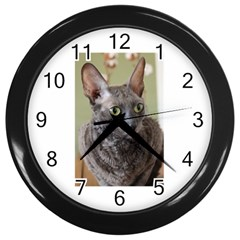 Cornish Rex, Blue Wall Clocks (Black)
