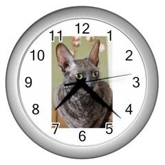 Cornish Rex, Blue Wall Clocks (Silver)