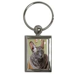 Cornish Rex, Blue Key Chains (Rectangle)
