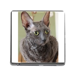 Cornish Rex, Blue Memory Card Reader (Square)