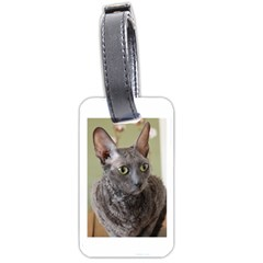Cornish Rex, Blue Luggage Tags (Two Sides)