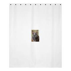 Cornish Rex, Blue Shower Curtain 60  x 72  (Medium)