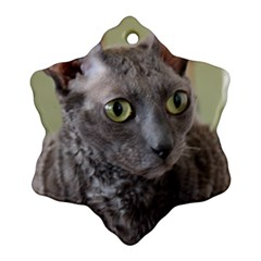 Cornish Rex, Blue Ornament (Snowflake)