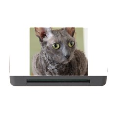 Cornish Rex, Blue Memory Card Reader with CF