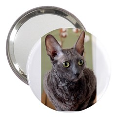 Cornish Rex, Blue 3  Handbag Mirrors