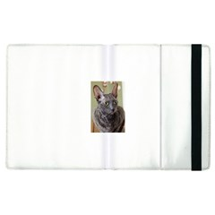 Cornish Rex, Blue Apple iPad 3/4 Flip Case